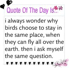"""""""+ qoute of the day"""" by your-nina-and-eleanor-anons ❤ liked on Polyvore"""