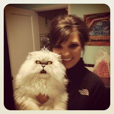 My friend's attempt to take a cute pet picture  ( @Lindsey Louks @Ashley Louks, looks like Fluffy has a long lost brother)