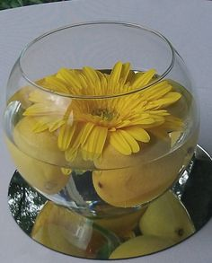 Simple floating gerbera daisy arrangement with lemons
