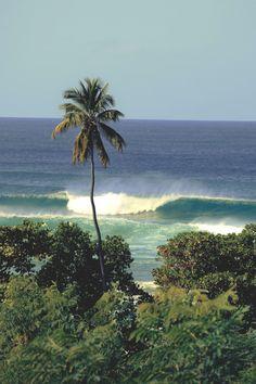 Beach Scenery, Vintage Surf, Beach Shack, Summer Dream, Summer Feeling, Tropical Vibes, Summer Aesthetic, Travel Goals, Island Life
