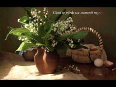 Un buchet de margaritare (Ernesto Cortazar - Meditative) - YouTube Lily Of The Valley, Kinds Of Music, Spring Time, Flower Arrangements, Plants, Lilies, Motto, Youtube, Sweet