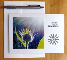 Greeting Card You Are My Sunshine Handmade Card Photo Card - JennysrainbowPhoto On Etsy