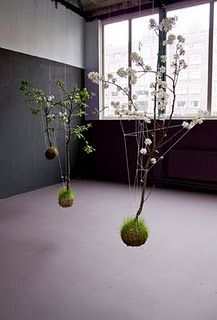 Kokedama.  I need to grow ALL of these.