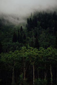 https://flic.kr/p/ptQfWR | Little Cottonwood Canyon
