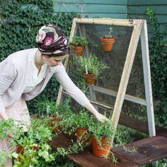 Learn how to make this quick and easy free standing herb garden out of salvaged wood and window frames! Container Herb Garden, Diy Herb Garden, Edible Garden, Garden Crafts, Garden Ideas, Real Flowers, Diy Flowers, Large Terracotta Pots, Diy Plant Stand