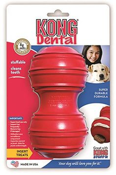 KONG Dental with Rope >>> Discover this special dog product, click the image : Kong dog toys