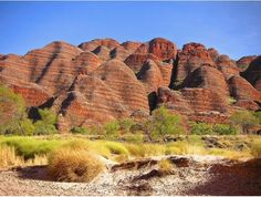 Bungle Bungles are found in the the Purnululu National Park in Western Australia, also a World Heritage Site. They are beehive shaped mounds with tiger striping caused by bacteria growing on the gray stripes and iron manganese on the red. They're an incredible sight. photo: Neils Photography    Read more at http://www.environmentalgraffiti.com/news-incredible-geological-wonders-world#zDsgyJmskv8k6uxz.99