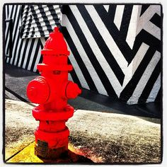 TED red in Wynwood