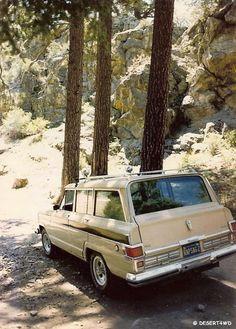Vintage Wagoneer sighting--in it's natural environment.