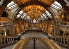 27 Fine Examples Of Architectural Photography - National History Museum London