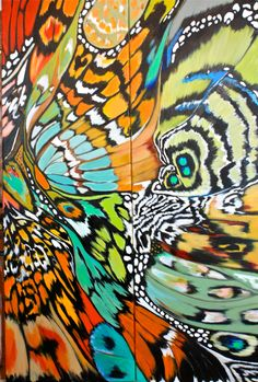 patterns in nature - abstracted, repeated, overlaid - image inspiration: DI Watson/Mariposa diptych