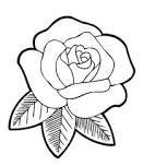 Rose in rose flower drawing Easy Rose Flower Drawing Easy Roses to Draw Cartoon Rose Drawing Cartoon Roses Draw Rose Sketch Easy, Rose Flower Sketch, Rose Drawing Simple, Easy Mandala Drawing, Easy Flower Drawings, Flower Drawing Images, Flower Sketches, Simple Rose, Easy Drawings