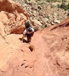Millie's friend Kenneth leading a pitch in the American South-West. millie-climbing-cat-craig-armstrong-11