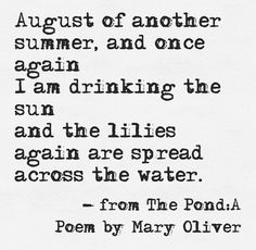 Fresh Farmhouse / A Poem by Mary Oliver Mary Oliver Poems, Fresh Farmhouse, Lily Pond, Summer Memories, Poetry Quotes, Beautiful Words, Beautiful Life, Inspire Me, Love Quotes