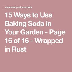 15 Ways to Use Baking Soda in Your Garden - Page 16 of 16 - Wrapped in Rust