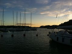 Harbour and sunset