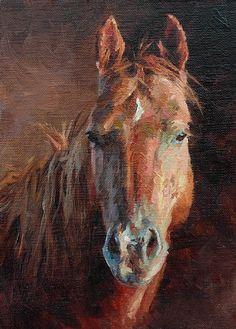 Horse Portrait by Jim Clements Oil ~ 7 x 5