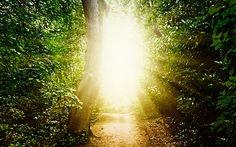 OVNI Hoje!…Estudo científico mostra maior evidência até agora de vida após a morte - OVNI Hoje!...