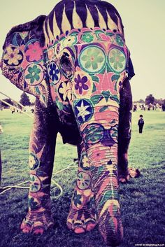 elephant ...........click here to find out more http://googydog.com