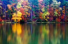 Fall Colors by Tony Colvin on 500px