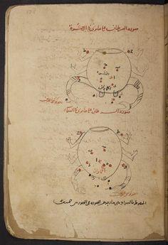 K. Ṣuwar al-kawākib; [Ahlwardt no. 5659; Mq704]  c. 600 H  [c. 1203]Berlin, Staatsbibliothek  Ms. or. qu. 704 [= Ahlwardt 5659] Incomplete and bound in disorder