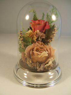 Preserved Roses Say I Love You ALL Year By