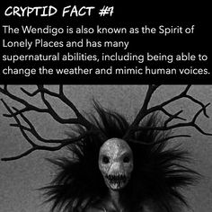 Wanna know more about the Wendigo? Check out our podcast, link in bio. Myths & Monsters, Scary Monsters, Magical Creatures, Fantasy Creatures, Scary Horror Stories, Ghost Stories, Horror Photos, Creepy Facts, Legends And Myths