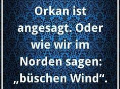 """Hamburg, wir im Norden sagen """"büschen Wind"""""""