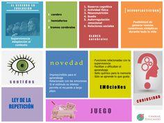 10 claves neuroeducativas