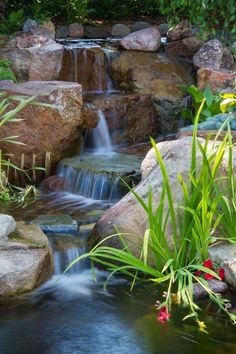Waterfall created by Aquascape Designs in St. Charles, IL. #WaterfallWednesday