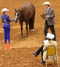 Horse Show Style