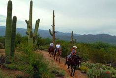 The Houston's Horseback Riding offers hours of fun in the beautiful trail rides and horsemanship classes. Its location is on the east of Tucson on the... discountattractions.com