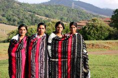 The Geometric Genius of Toda Tribal Embroidery | Storytellers of Wonder