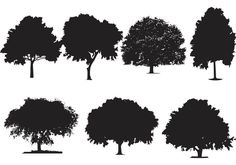 Oak Tree Silhouette Vectors - https://www.welovesolo.com/oak-tree-silhouette-vectors/?utm_source=PN&utm_medium=welovesolo59%40gmail.com&utm_campaign=SNAP%2Bfrom%2BWeLoveSoLo