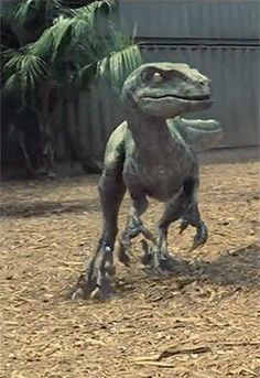 Raptor Delta Jurassic World Indominous Rex Michael Crichton, Jurassic World 2015, Jurassic Park Series, Science Fiction, Fantasy Wesen, Tyrannosaurus, The Lost World, Falling Kingdoms, Dinosaur Art