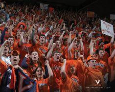Virginia Cavaliers Fans #1