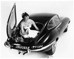 New Jaguar, Jaguar Xk, Jaguar E Type, Jaguar Cars, British Sports Cars, Classy Cars, Import Cars, Automotive Art, Rockabilly Fashion