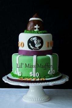 Florida State Football Helmet Groom S Cake Houston