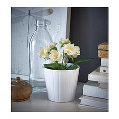 FEJKA Sztuczna roślina w doniczce - IKEA