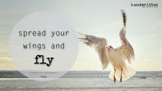 spread your wings and FLY | handwritten by Kitty