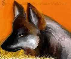 Some people are really good at art!  leave a like for the wolf packs of Minnesota! www.wolfquest.org
