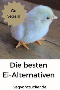 Hast du auch genug davon die Ei-Industrie zu unterstützen? Richtig so! In diesem Artikel habe ich dir die 14 besten veganen Ei-Alternativen zusammengefasst! Vegan Recipes, Vegan Food, Foodblogger, Tricks, Fitness, Plants, Dinner With Friends, No Sugar Diet, Alternative