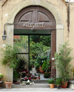 Flower Shop in Florence, Italy