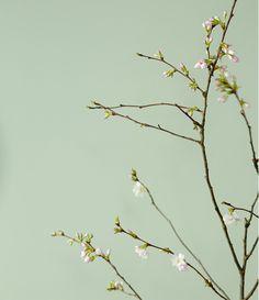 Gedeckte Naturfarben und Grau-Nuancen sowie  Rosé und Kupfer-Töne betonen den…