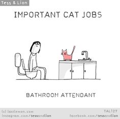 Tess and Lion: IMPORTANT CAT JOBS - BATHROOM ATTENDANT