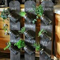 DIY Projects - Create a DIY Indoor Mason Jar Vertical Herb Garden Planter via The Whoot