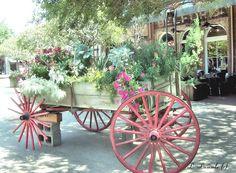 old wagon in Savannah, GA