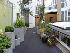 pipes as planters in landscape - Google Search