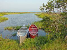 Two canoes on Assateague Island, VA