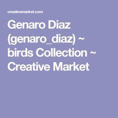Genaro Diaz (genaro_diaz) ~ birds Collection ~ Creative Market